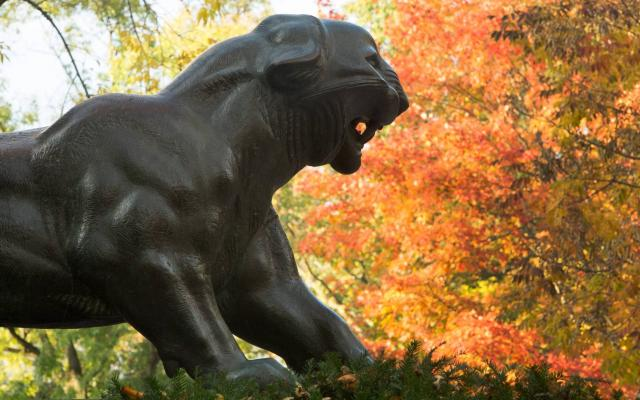 Princeton Tiger sculpture with fall foliage background